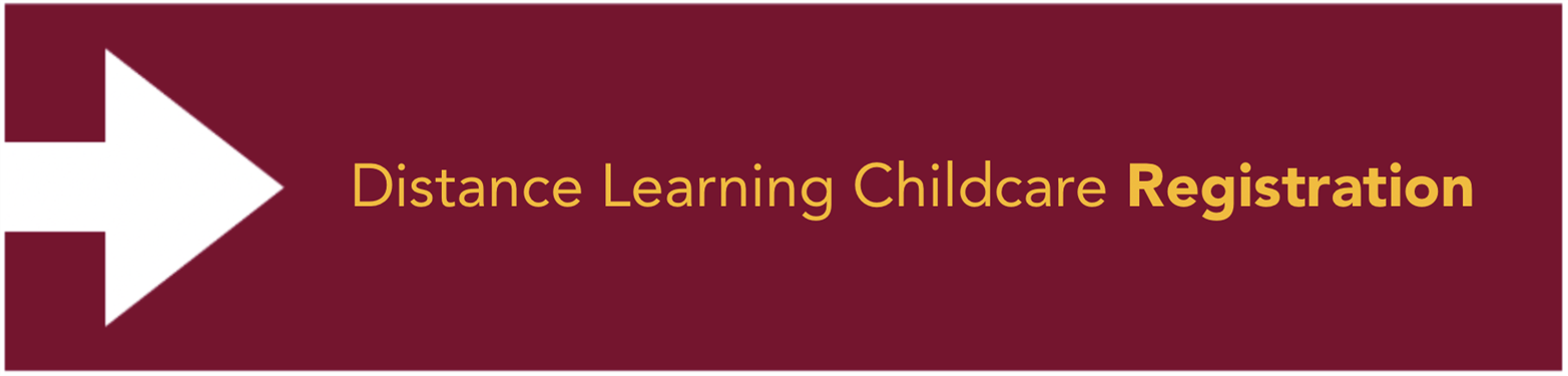 Distance Learning Childcare